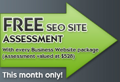 Free SEO Site Assessment